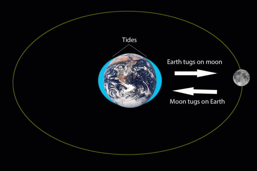 Gravitational Pull of the Earth: Definition & Overview